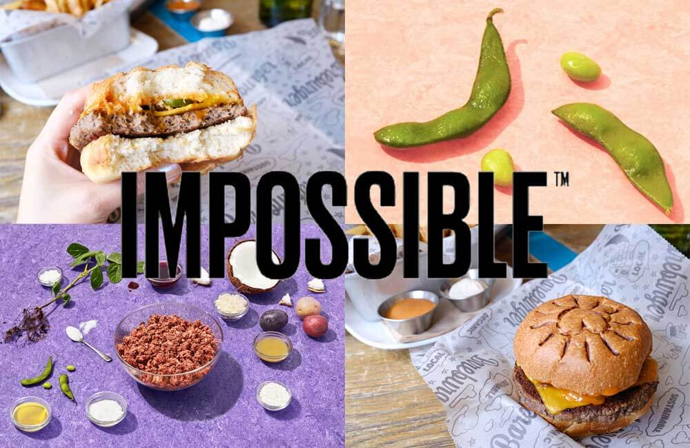 impossible_cover