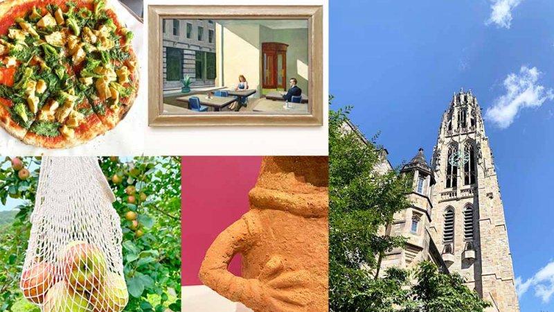 コネチカットで過ごした週末 – イェール大学美術館がすごい!