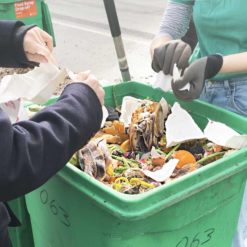 foodscrap_collection3