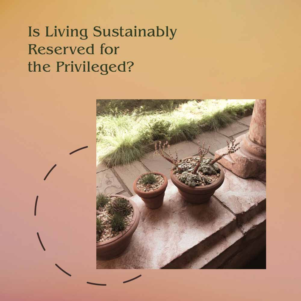 Is Sustainability a Privilege?