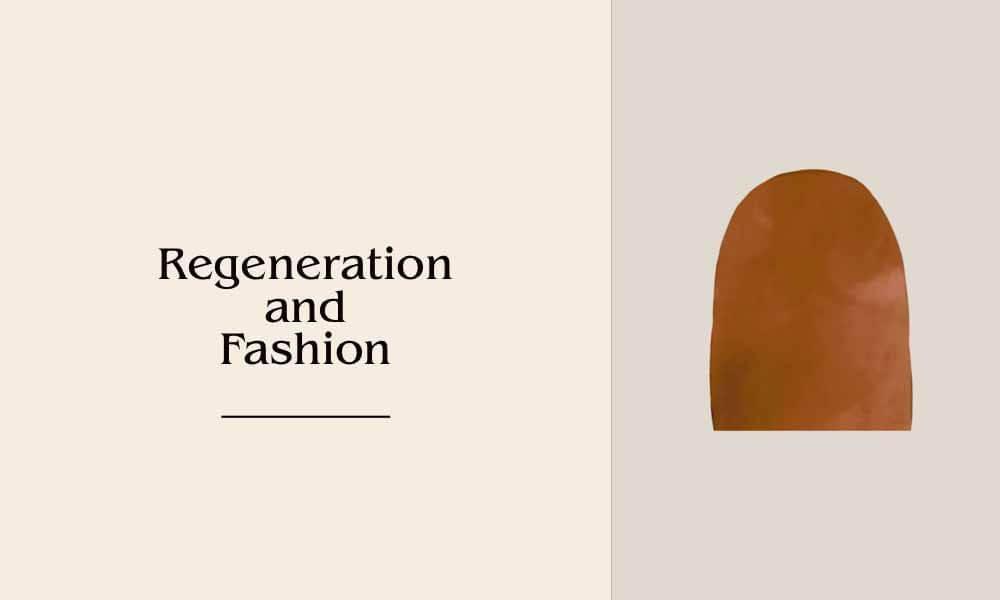 regeneration and fashion