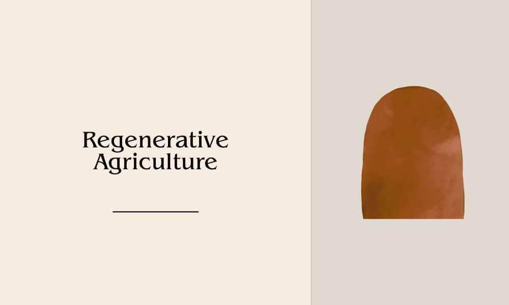regenerativeagriculture