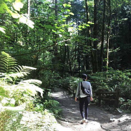 森を見て、木を見る