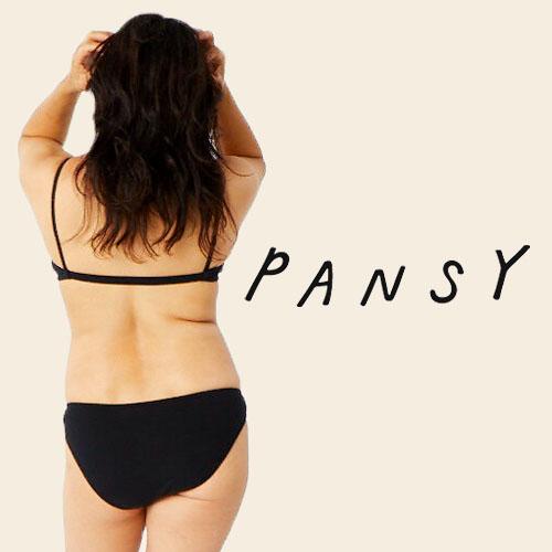 pansy500