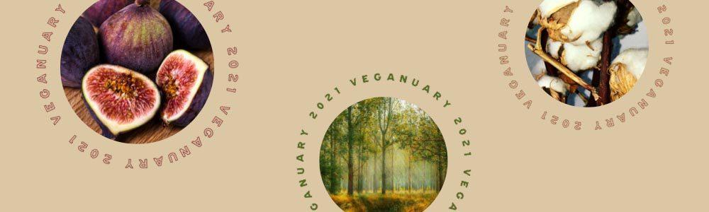 veganuary 2021